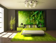 fototapeta FIXAR bambus